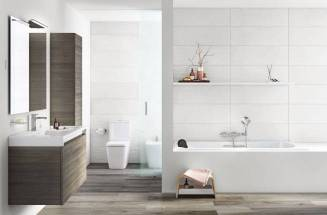 A comfort bathroom with Roca products